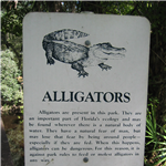 Destination Picture 3 for Hillsborough River State Park