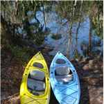 Destination Picture 6 for Hillsborough River State Park